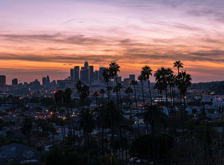 Everything About Los Angeles City